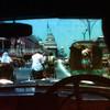 New Delhi View through Back of Taxi - New Delhi, India