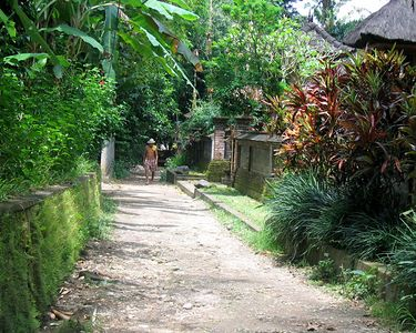 This is a lane through the village that the Amandari is located in