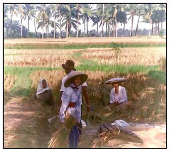 Indonesia, 1997