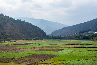 The Paro Valley