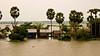 Raised homes on the Tonlé Sap at flood