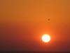sunset_05