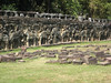 terrace_elephants_05