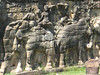 terrace_elephants_06