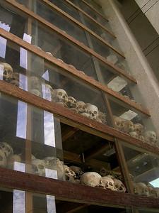 Killing Fields - Tower Skulls Display