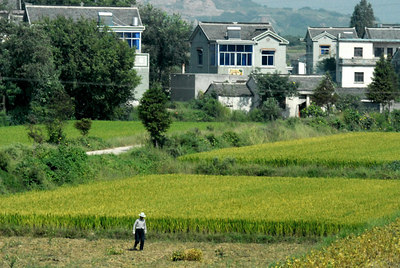 This is typical of the small farms along the route from Nanjing to Shanghai.  Many of the farmers are building new houses.