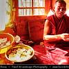 Asia - China - Tibet - Lhasa - Tibetian capital on Tibetan Plateau at altitude of 3,490 metres (11,450 ft) - Drepung Monastery - Largest of all Tibetan monasteries located on the Gambo Utse Mountain