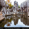 Asia - China - Southwest China - Yunnan Province - Shilin Stone Forest National Geological Park Naigu Scenic Area - UNESCO World Heritage Site - One of famous natural wonders of Yunnan - Spectacular Karst landscape with limestone formation groups