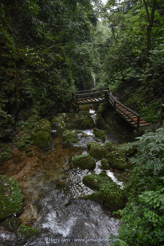 path in valley of Qingcheng Shan