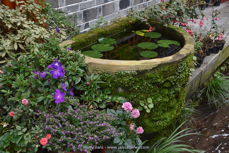 nice water feature