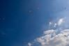 Kites above Dalian park