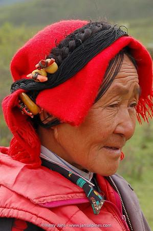 Sichuan,  Chuanzhusi, Gonggan Len, 3500m