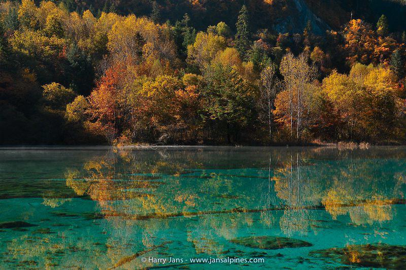 Juizhaigou, Five Flower Lake