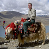 Harry on yak at Yamdrok Tsho
