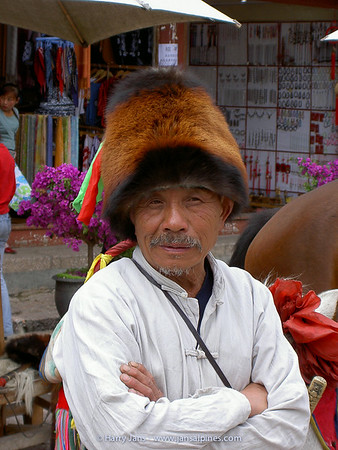 Lijiang, horse man with red panda hat