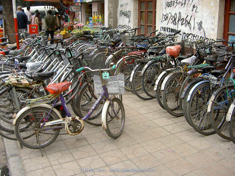 many bikes in China