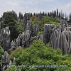 panorama Stone Forest