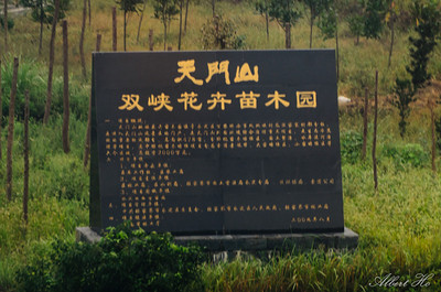Zhangjiajie - Tianmen Mountain 天门山