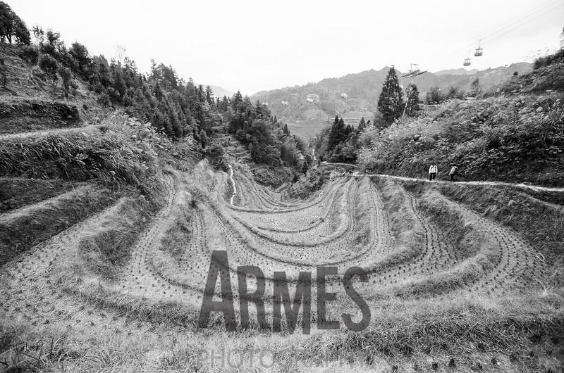 000436260005-Armes