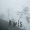 AP5_3060-Edit-Armes
