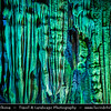 Asia - China - Southern China - Guanxi Province - Guilin - Reed Flute Cave - 芦笛岩 - Natural limestone cave with multicolored lighting - One of Guilin's most interesting attractions for over 1200 years
