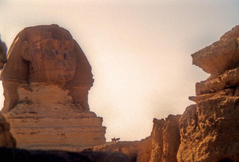 Sphinx in transit