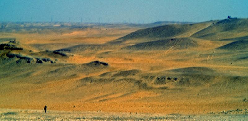 A walk in the Sahara
