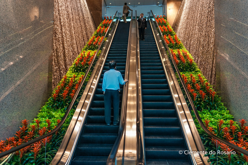 Escalator in one of the buildings flanked on either side with plants and waterfalls<br /> File Ref:2012-06-25-Hong Kong 046