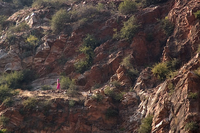 Women work the farms in colorful saris. The rocks are the 'Aravali ranges'- a very old formation of banded gneiss about 3 billion years old)
