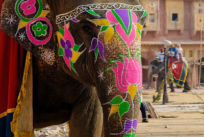 The elephants were decorated - just like the trucks