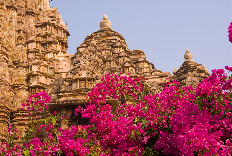 The buildings were covered by lush jungles for centuries and were thus not defaced by Islamic invaders