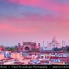 India - Uttar Pradesh State - Agra - Taj Mahal - UNESCO World Heritage Site - Jewel of Muslim Art in India - Exquisite 17th century ivory-white marble mausoleum on south bank of Yamuna river at Pink Sunrise
