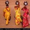 "India - Rajasthan - Jaisalmer - ""Golden City of India"" - Former medieval trading center in heart of Thar Desert - Daily life with women in traditional dress carrying water on their head"