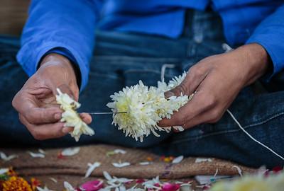 Stringing Blossoms