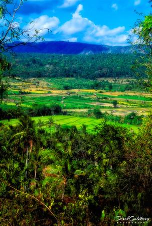 Bali Inland Scenic #1 - Manggis, Bali, Indonesia