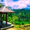Bali Inland Scenic #2 - Ubud, Bali, Indonesia