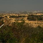 sanfordfriedmanfotography's photo