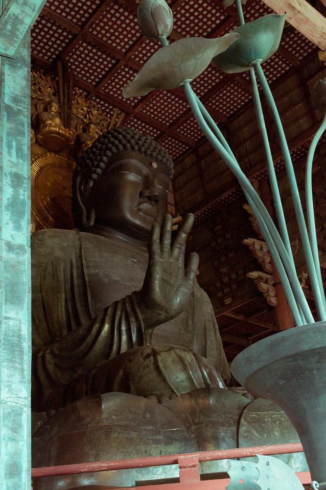 Nara temples and Gardens