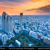 Japan - Honshu Island - Tokyo - 東京 - Tōkyō - Shinjuku - 新宿区 - Shinjuku-ku - Major commercial & administrative centre, housing the busiest train station in the world - Cityscape as seen from Tokyo Metropolitan Government Building - 東京都庁舎 - Tōkyō-to Chōsha - Tokyo City Hall - Tochō - 都庁