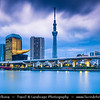 Japan - Honshu Island - Tokyo - 東京 - Tōkyō - Asakusa - 浅草 - Sumida-gawa River landscape - Sky tree with Asahi Beer Tower and Asahi Super Dry Hall with its characteristic Flamme d'Or