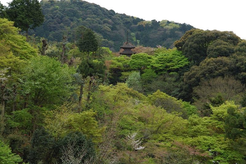 Kyoto Kiyomizu Temple 24.jpg