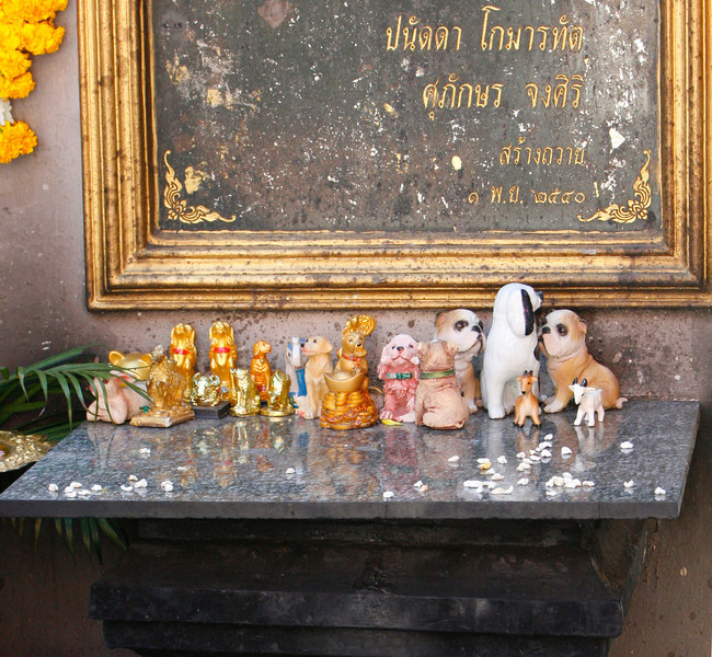 These statues of dogs were left by whorshippers at the temple for the Chinnese Year of the Dog.