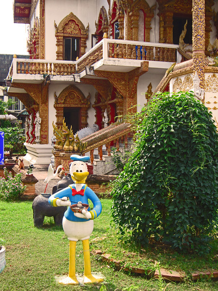 This statue of Donald Duck is in the front yard of a prominant temple. He seems to be doing well with the chop sticks.