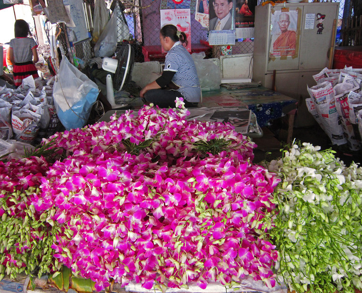 Buddles of orchids are sold to restaurants for their tables.