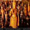 Asia - Laos - Luang Prabang Province - Pak Ou Caves - One of the holiest sites in Laos located amongst limestone cliffs where Mekong & Nam Ou rivers meet - Tham Ting & Tham Theung caves filled with thousands of Buddha images and statues which have been deposited here over centuries