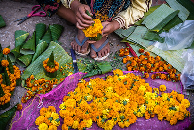 Flower Offerings, Produce Market