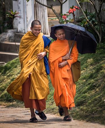 Monks with Umbrella