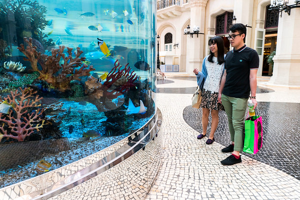 Aquarium at The Venetian Macau