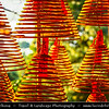Macau - Macao - 澳門 - 澳门 - SAR - Special administrative region of China - A-Ma Temple - 媽閣廟 - 妈阁庙 - Templo de A-Má - One of the oldest and most famous Taoist temples in Macau - Spiral Incense Coils Burning used in religious ceremonies & ritual purification