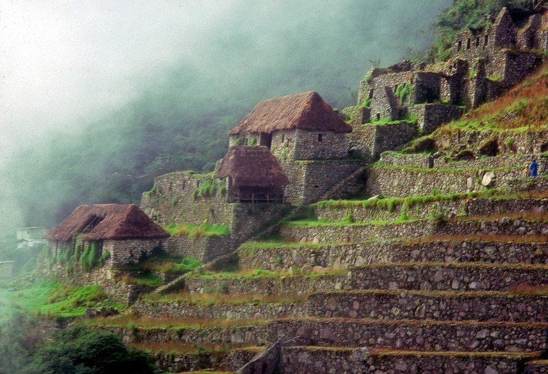 Terrace gardens and houses,machu pichu, peru